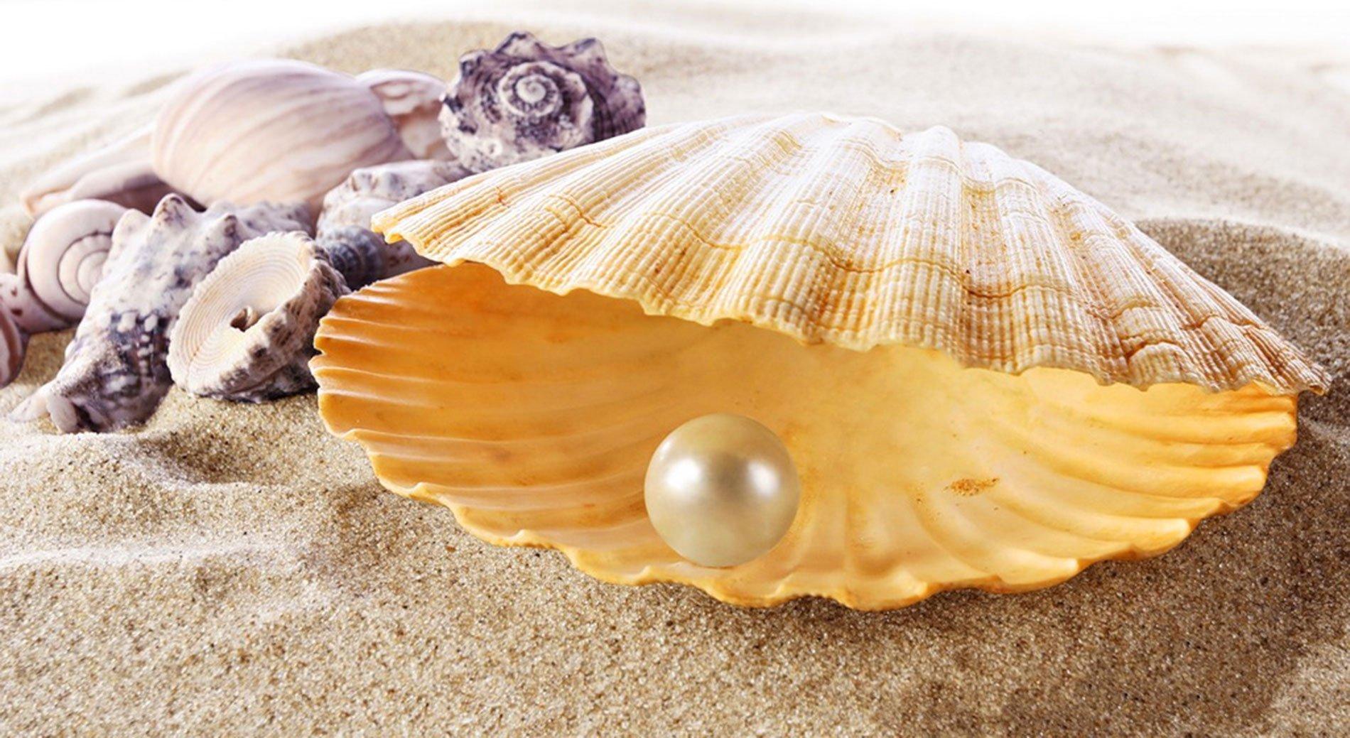 Pearl Fotografie