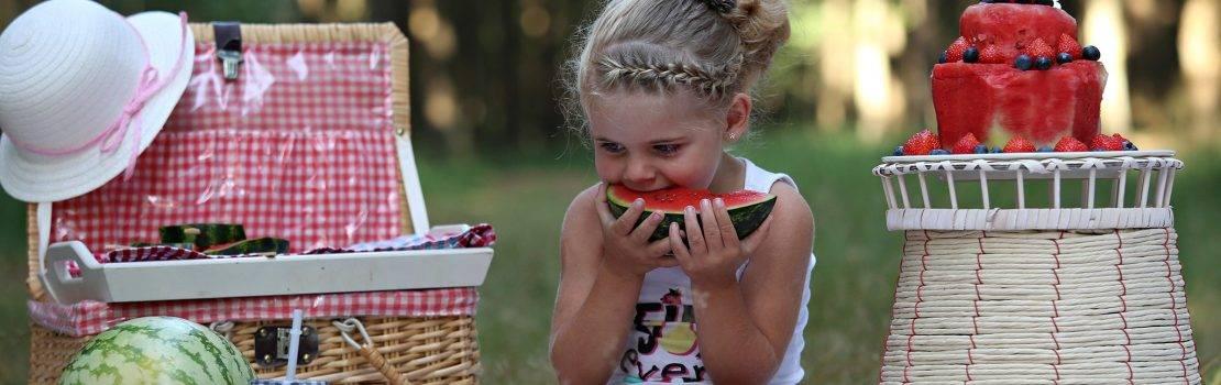 Meloenen Picknick